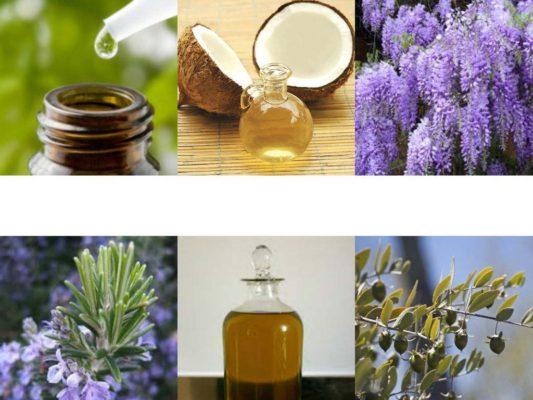 Herbs for hair growth -hair fall treatment