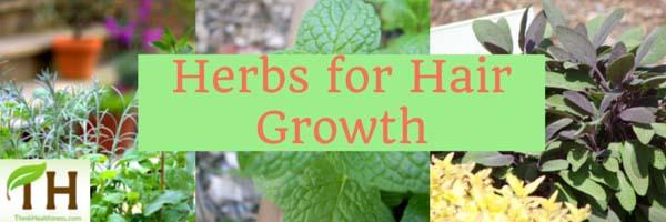 Herbs hair growth-Hair Fall