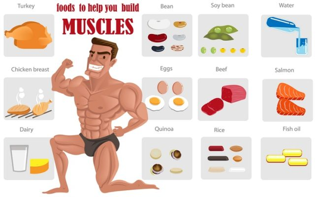 Foods-That-Build-Muscles