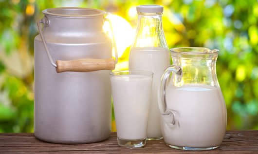 Milk for Muscle Building